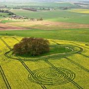 в апреле 2009 года начался новый  сезон таинственных кругов на полях